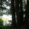 Taki widok na jezioro bardzo mi się spodobał #Jeziora