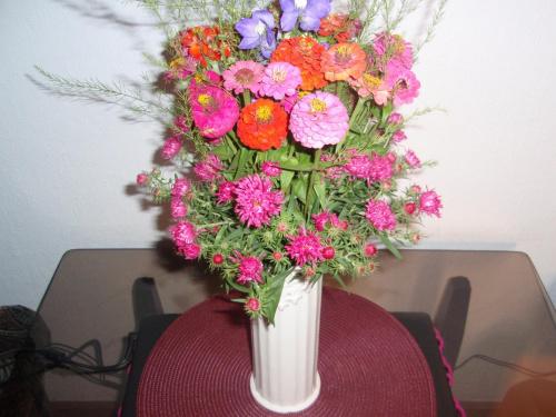 Kwiaty działkowe