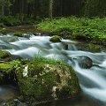 Gdyby tak ktoś pytał to zdjącie wykonane zostało w Polskich Tatrach. #Naris #Strumień #Widoki #Woda