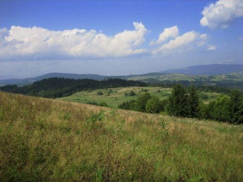 Tri Kopce (824 m.) - widok z grzbietu na północny zachód, w dole niewidoczna wieś Skalité #Kysuce #Słowacja #TriKopce
