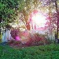 #dom #natura #przyroda #rudera #słońca #słońce #zachód