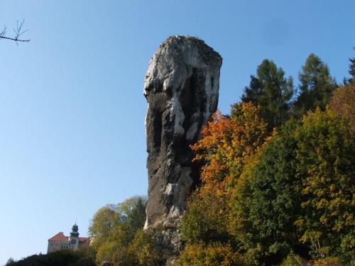 Maczuga Herkulesa #jura #krajobrazy #natura #PieskowaSkała #Polska #widoki #jesień #skałki #przyroda