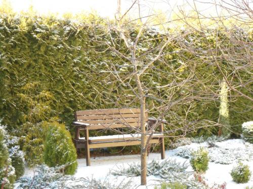 Pusta ławka, czeka na wiosnę... #zima #ławka #odpoczynek