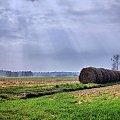 i dla odmiany krajobraz #krajobraz #idok #wiosna #pola #łąki