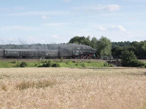 parowóz OL 49, trasa Poznań - Wolsztyn, Szreniawa, 12.07.2009 #Dampfeisenbahn #Dampflok #Eisenbahn #kolej #kolejnictwo #lokomotywa #lokomotywy #OL49 #OL49PKP #parowozy #parowóz #pociąg #PojazdySzynowe #Szreniawa #Train #Zug