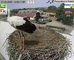 http://images50.fotosik.pl/167/129425fc74ab9facm.jpg