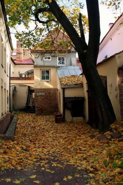 Podwórko przy Didzioji g./ul.Wielka/ #Wilno