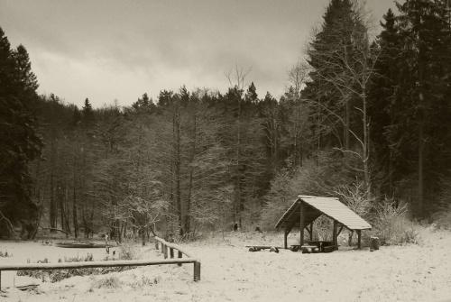 Zdjęcie konkursowe #zima #ponuro #grożnie