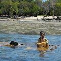 #afryka #Kenia #morze #plaża #safari #tropiki #wybrzeże