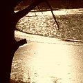w słoncu #staw #zima #slonce #brzozy