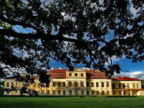 Drogosze - pałac Denhoffów