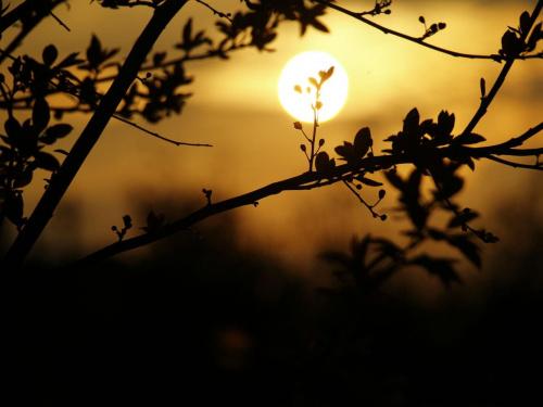 Kiedy noc nadchodzi... #cienie #słońce #zachód