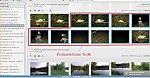 images50.fotosik.pl/218/46b8c305e539cbfem.jpg