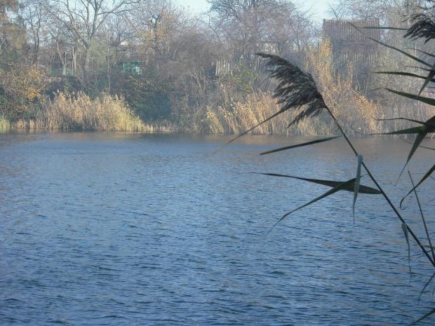 jeziorko jesienią. #jezioro #przyroda #natura