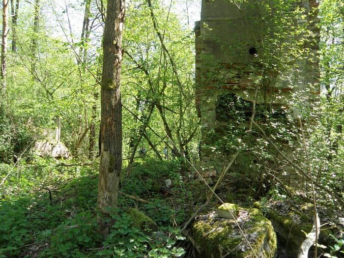 Ruiny młyna papierniczego w Rosiejewie- Papier und Zelullosenfabrik  Pulverkrug 03dec378e08a3d7c
