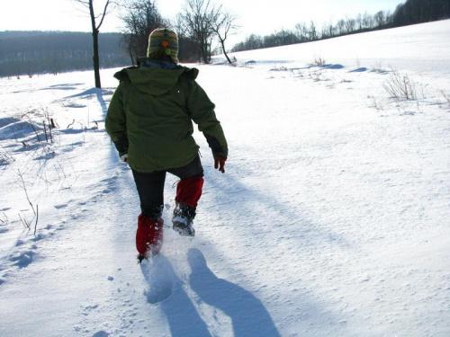 W drodze na Skałkę #Śnieg #droga #skałka #zima #ParkKrajobrazowyChełmy
