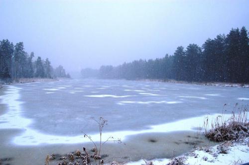 #ZbiornikWodny #RzekaSzum #Roztocze #ParkKrajobrazowyPuszczySolskiej #zima