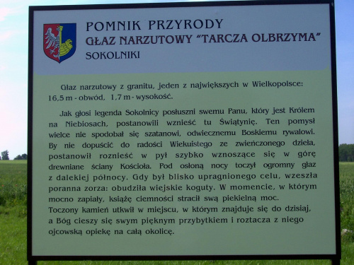 Sokolniki /Gniezno głaz Tarcza olbrzyma