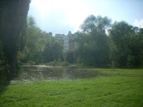 21 maj 2010 godzina 17:20, Wrocław, rzeka Oławka, wylewająca się na łąkę #RzekaOławka #Wrocław #łąka #podtopienie