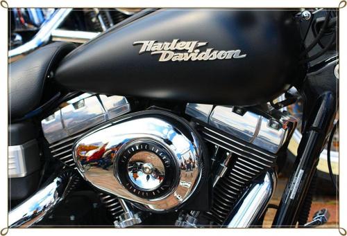Dusza , czy nie ! #Harley #motocykl