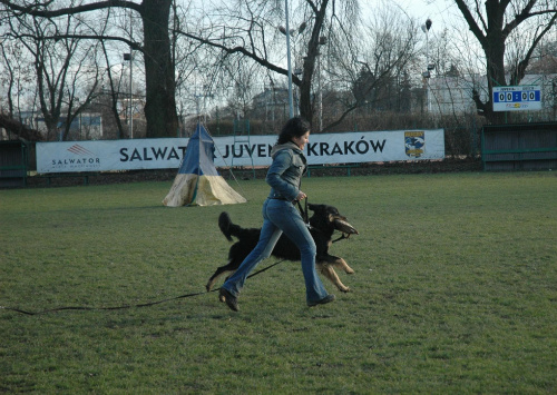 Jawor :)