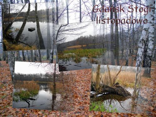 Spacer w deszczu... #jesień #listopad #Gdańsk #jezioro #widoki