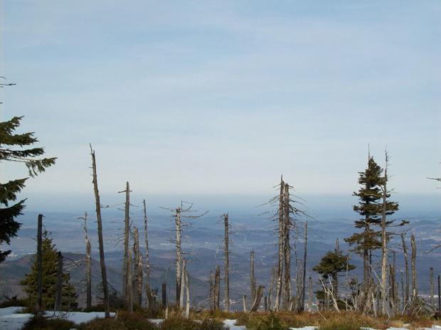... #góry #karkonosze #zima