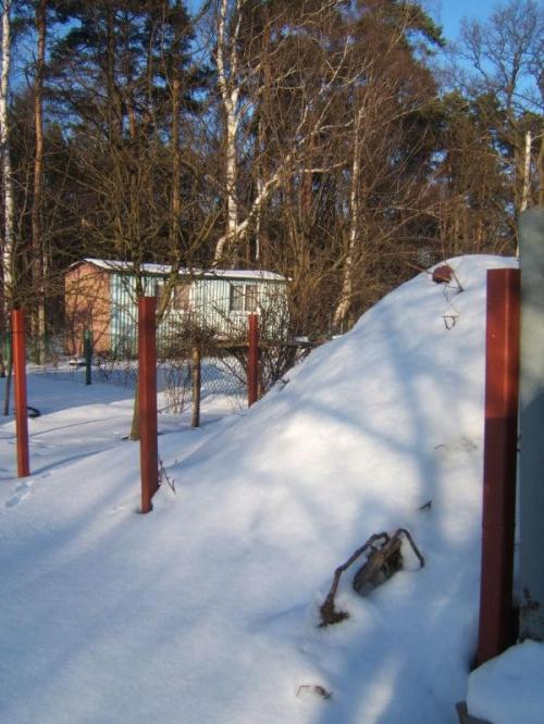 Ogródki działkowe w śniegu #działka #OgródkiDziałkowe