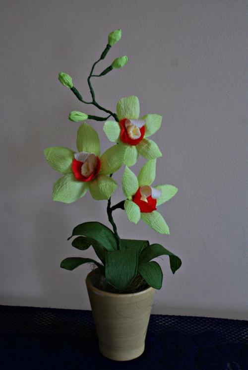 Storczyk #bibuła #dekoracje #hobby #KompozycjeKwiatowe #krepina #KwiatyZBibuły #MojePrace #pomysły #RobótkiRęczne