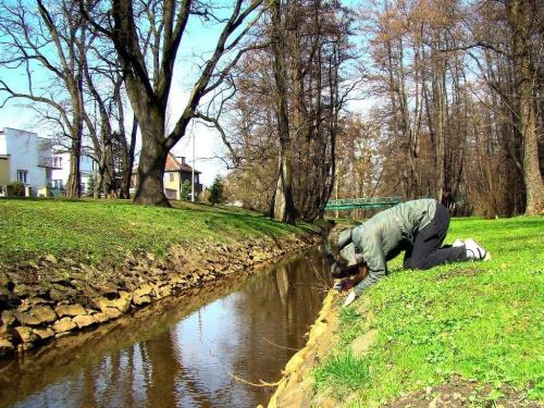 z poświęceniem :) #Wrocław #wiosna