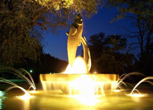fontanna #fontanny #parki #wieczorne #ficiol007
