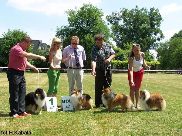 Od lewej: Ebi, Roxa, Prymus, Iveta