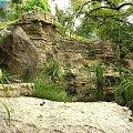 skalniak - www.ogrody.skalne.com.pl #głazy #kaskady #oczka #ogród #oranżeria #projekty #skalny #skalniak #ZakładanieZieleni #sztuczne #skały