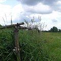 Wiejskie ogrodzenie działek #ogrodzenie #pole